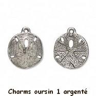 charmsoursin1argent.jpeg
